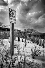 Seaside park dunes